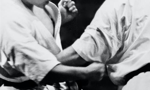 Shidokan-Karate